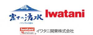 b_iwatani_2016